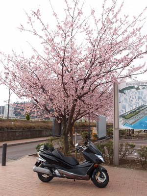 Blog_0019_2