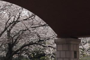 Blog17_3