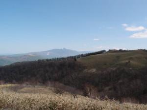 Blog_0041_1