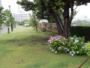 Blog_0025_2