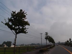 Blog_0010
