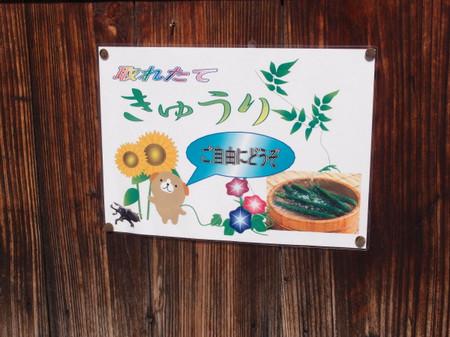 Blog_0173