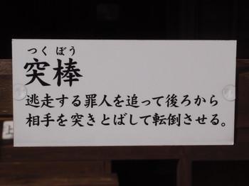 Blog_0252
