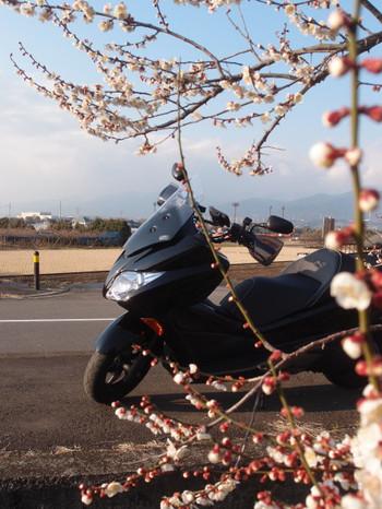 Blog_0064