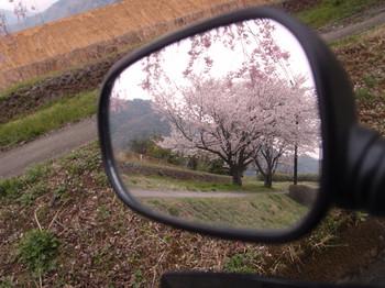 Blog_0124