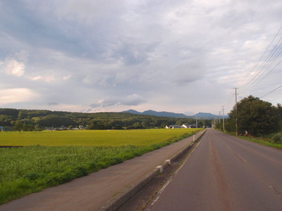 Blog_0425