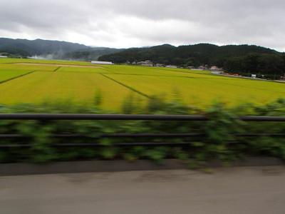 Blog_0164