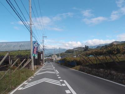 Blog_0047