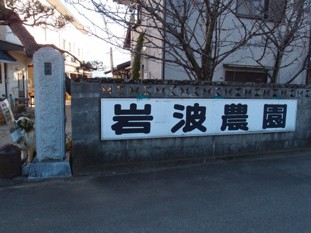 Blog_0168