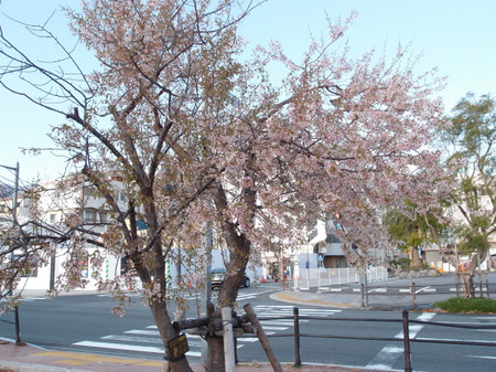 Blog_0138