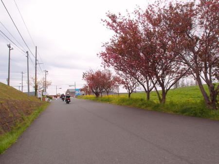 Blog_0055