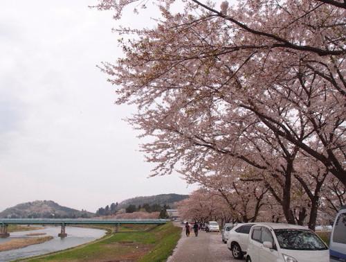 Blog_a0079